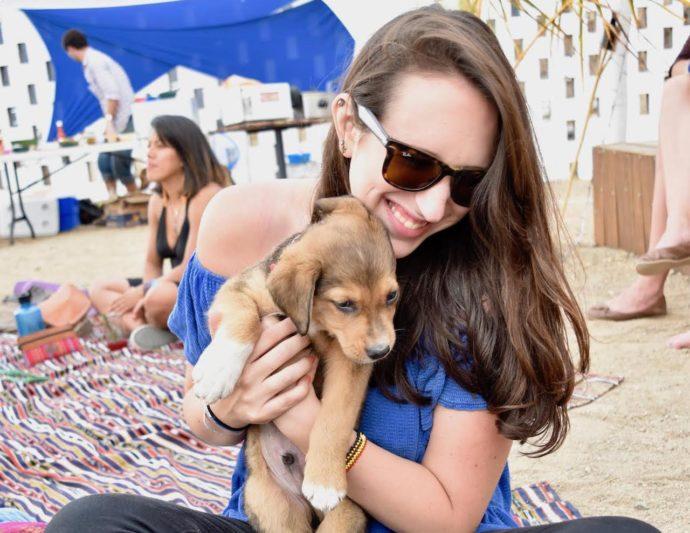 cute-puppy-in-girls-lap