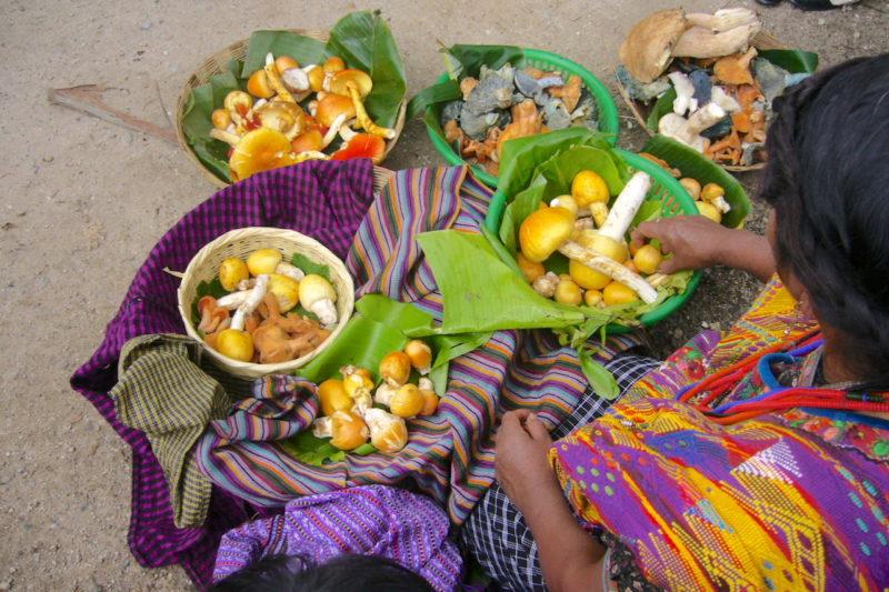 Maya-Woman-Selling-Food-San-Juan-Lake-Atitlan-Guatemala